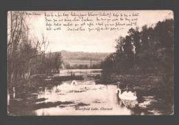 Clonmel - Marlfield Lake - 1905 - Tipperary