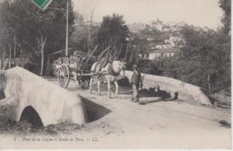 CPA Pont De La Cagne Et Route De Nice (avec Très Bel Attelage) - Autres Communes