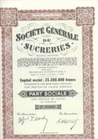 Société Générale De Sucreries - - Agriculture