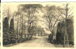 Brasschaat - Eikelenberg - Fotokaart - Brasschaat
