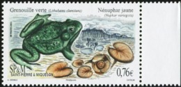 SAINT PIERRE AND MIQUELON SPM 2015 Northern Green Frog Frogs Amphibians Animals Fauna MNH - Frogs
