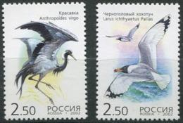 Rusia 6656/6657 ** MNH. 2002 - 1992-.... Federación