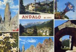 Andolo - Formato Grande Viaggiata – E 14 - Sondrio