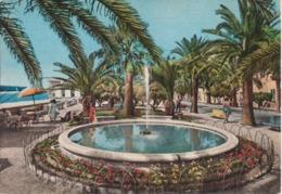 PIETRA LIGURE - RIVIERA DELLE PALME - PALMIZI - ANIMATA - VIAGGIATA - Italie