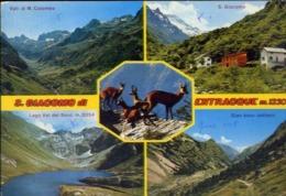 S.giacomo Di Entracque - Cuneo - Valle Gesso - Formato Grande Viaggiata – E 14 - Cuneo