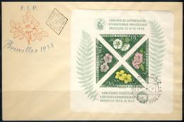"""1958 Hungary FDC With Imperforated Souvenir Sheet """"Brussels FIP Congress"""" Scarce Item Michel # Block 28B - Hongrie"""