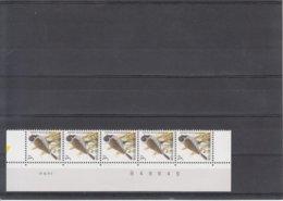 Datumstrook .9.III.95 - 1985-.. Birds (Buzin)