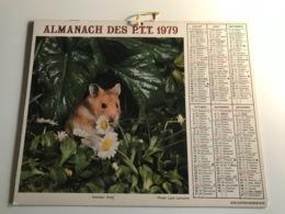 Calendrier - Almanach Des P.T.T  RHONE - 1979 - Passerine / Hamster Doré - Kalenders