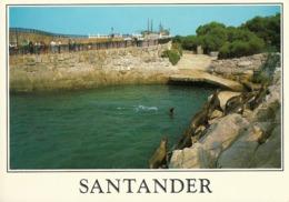Santander Mini Zoo Parque De La Magdalena Focas . - Tierwelt & Fauna