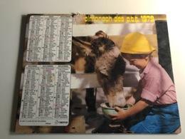 Calendrier - Almanach Des P.T.T  AIN - 1979 - Efant Nourrissant Vaches & Ane - Kalenders