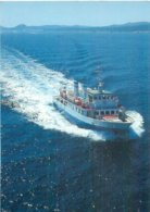 Amour Des Iles - Deservant Les Iles De Porquerolles - Societe TV  AW 513 - Barche