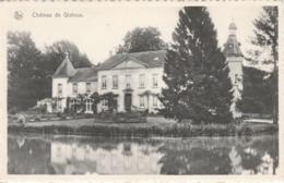 CHAUMONT GISTOUX Chateau - Chaumont-Gistoux