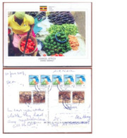 UGANDA Postally Used Postcard OWINO MARKET At Kampala To The Netherlands Bird & Snake Stamps OUGANDA - Ouganda (1962-...)