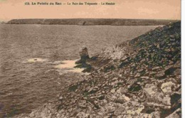 29 PLOGOFF Petit Port De Bestrée, Vue Prise à 100 Mètres D'altitude - Plogoff