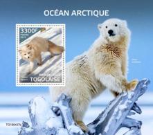 Togo. 2019 Arctic Ocean. Bear. (0437b)  OFFICIAL ISSUE - Bears