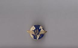 Pin's Armée / Insigne SACA Service Administratif Du Commissariat De L'Air (EGF Doré) Longueur: 2,5 Cm - Militaria