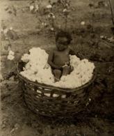 LA STUDY IN BLACK AND WHITE COTTON BASKET FIELD NEWMAN   +- 25*20CMFonds Victor FORBIN (1864-1947) - Fotos