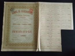 ANCIENNE ACTION BANQUE DE CHARBONNAGES 250 FRANCS - P02 - Actions & Titres