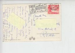 SVIZZERA  1954 - Annullo Illustrato  - Canottaggio - Canottaggio
