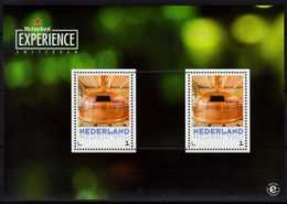 Nederland - Heiniken Experience - Set Of MS And 3 Postcards MNH** Brewery, Building, Brewing Cassel - Biere