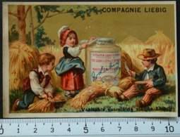 LIEBIG CHROMO FOIN 1880 HUTINET PARIS CARTE-RECLAME PUBLICITÉ 9 MÉDAILLES D'OR RECETTE VICTORIAN TRADE CARD AD - Liebig