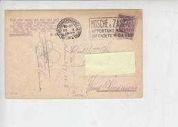 """ITALIA  1928 - Annullo Meccanico - """"mosche E Zanzare - Malattie"""" - Malattie"""