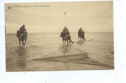 Oostende Ostende Départ Pour La Pêche Aux Crevettes - Oostende