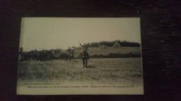 A1:manoeuvres Des 13e Et 14e Corps D'armées, 1909- Mise En Batterie Des Pièces De 75 - France
