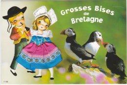 CARTE BRODEE:  GROSSES BISES De BRETAGNE  LES MACAREUX - Embroidered