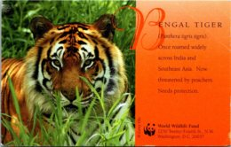 Washington D C World Wildlife Fund Bengal Tiger 1997 - Washington DC