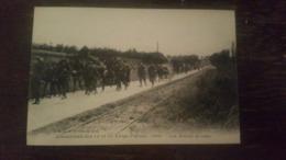 A1:manoeuvres Des 13e Et 14e Corps D'armées, 1909- Les Mulets De Bâts - Lyon