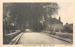 CPA 45 Loiret La Selle Sur Le Bied La Route De Montargis - France