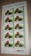 BUZIN 4759** Krooneend / Oiseaux - Vogels - Birds - Nette Rousse** Pl 1 - 1985-.. Uccelli (Buzin)