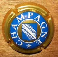 N°1107 CAPSULE DE CHAMPAGNE ET AUTRE - Autres