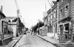 44 La Bernerie, Rue Georges Clemenceau, Cpsm - Francia