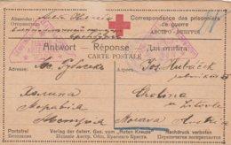 Russie Carte Prisonnier De Guerre Censurée Wien 1917 - Covers & Documents