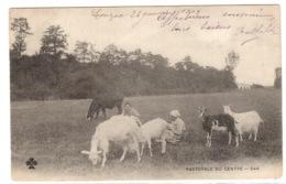 PASTORALE DU CENTRE (19) - CHÈVRES - PAYSANNES - ELEVAGE - AGRICULTURE - Allevamenti