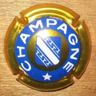 N°1111 CAPSULE DE CHAMPAGNE ET AUTRE - Autres