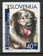 Slovénie - Slovenija - 1992 - Yvert N° 28A ** - Championnat Du Monde Du Chien De Race - Slowenien
