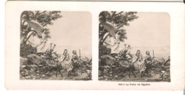 La Fuiteen Egypte- 1904 (S046) - Stereo-Photographie