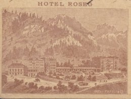 GR   PONTRESINA  /  HOTEL ROSEG - 1882-1906 Armoiries, Helvetia Debout & UPU