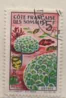 Französisch-Somaliland 1963 Koralle MiNr.: 351 Gestempelt; French Somali Coast, Used Scott: 298, Yt: 316, Sg: 469 - French Somali Coast (1894-1967)