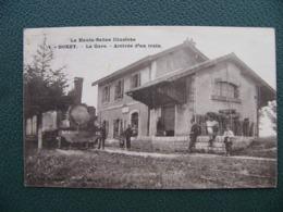 BOREY La Gare Arrivée D'un Train Haute Saône - Sonstige Gemeinden