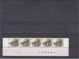 Datumstrook 22.IV.91 - 1985-.. Birds (Buzin)