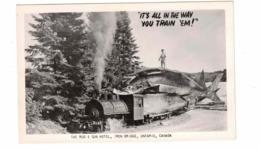 IRON BRIDGE, Ontario, Canada, Rod & Gun Hotel, Exaggerated Fish,  Real Photo Postcard, Algoma County - Ontario