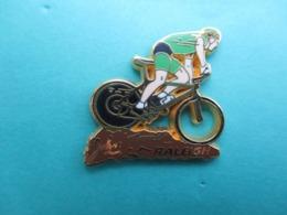 Pins Arthus Bertrand , Cycliste , Raleigh - Arthus Bertrand