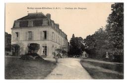 91 ESSONNE - SOISY SOUS ETIOLLES Château Des Donjons (voir Descriptif) - Andere Gemeenten