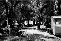 B61088 Cpsm Roquebrune - Terrain De Camping Du C.C.O.S - France