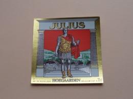 HOEGAARDEN > JULIUS 33 Cl  ( Zie / Voir / See / Zie Foto ) ! - Bière