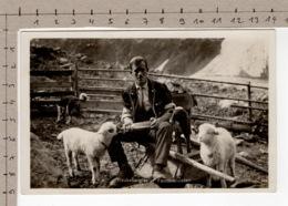 Treubesorgter Familienvater - Armailli Et Moutons / Armailli Und Schafe / Armailli E Pecore / Armailli And Sheep - Fattorie